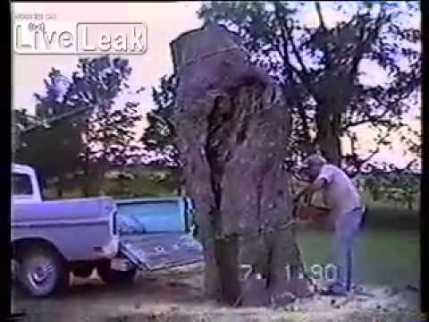 This Dumb Old Man Crushes His Car After Sawing A Tree Trunk